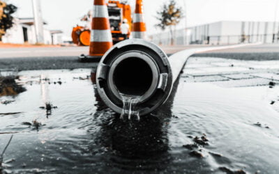 The Top 4 Causes Of Sewer Damage